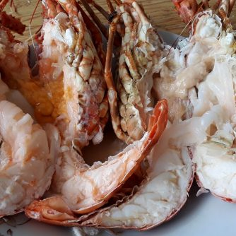 frozen lobster 03
