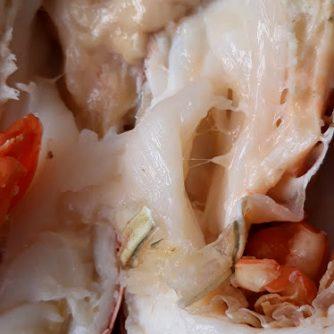 frozen lobster 04