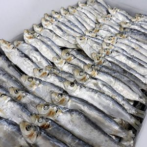 Dried Herring