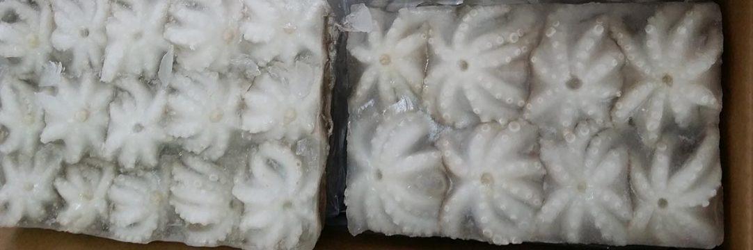 octopus vietnam frozen