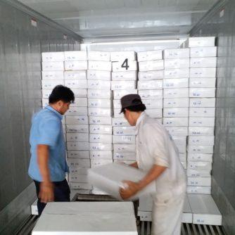 Pinetree Vietnam Co., Ltd 16 Đặng Tất, Tân Định, Q1, TPHCM Seafood export Freshness - Quality - Integrity