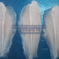 Potential market for Vietnam Pangasius – Middle East