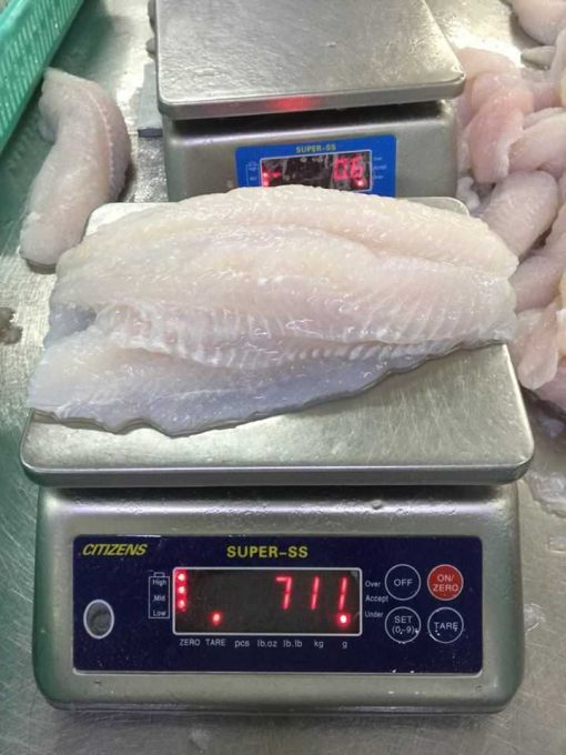 Pangasius Fillet weighing scale